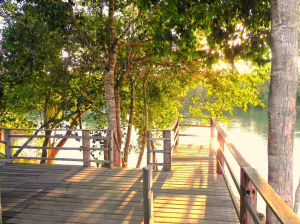 benefits of sunlight