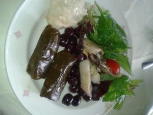 stuffed vine leaves, antipasti , hummus and salad