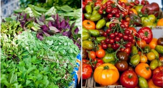 start a food blog